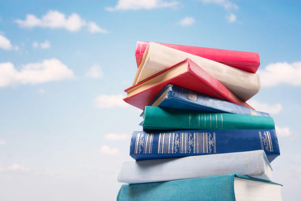 Bibliographie Coaching professionnel